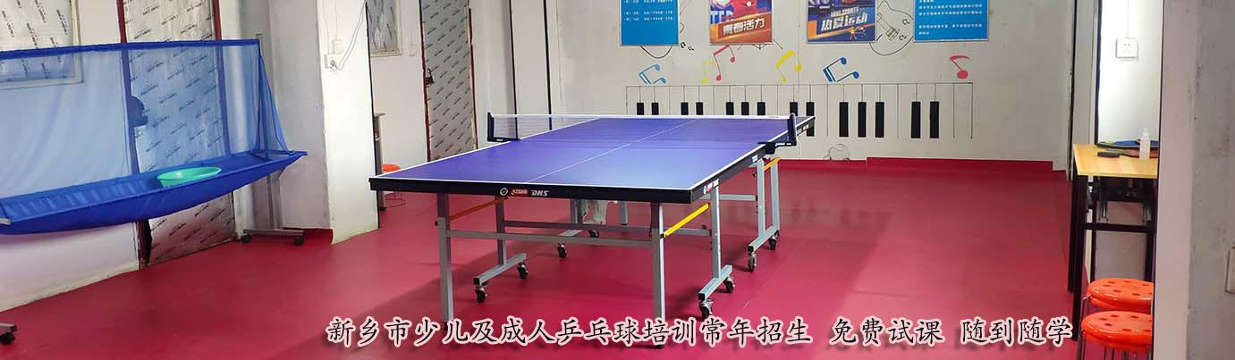 新乡乒乓球培训