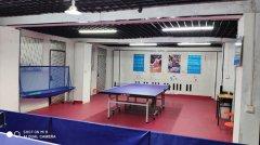 新乡少儿及成人乒乓球培训,免费试课,一对一辅导陪练